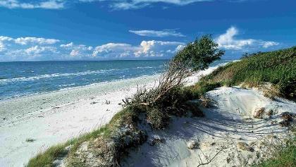 Wilder Weststrand der Halbinsel Fischland-Darß-Zingst