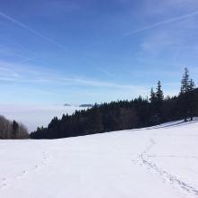 Abzweigung zum Hochbuchberg