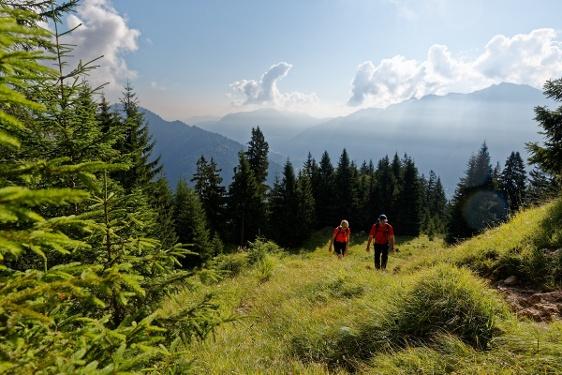 Bergtour - Notkarspitze