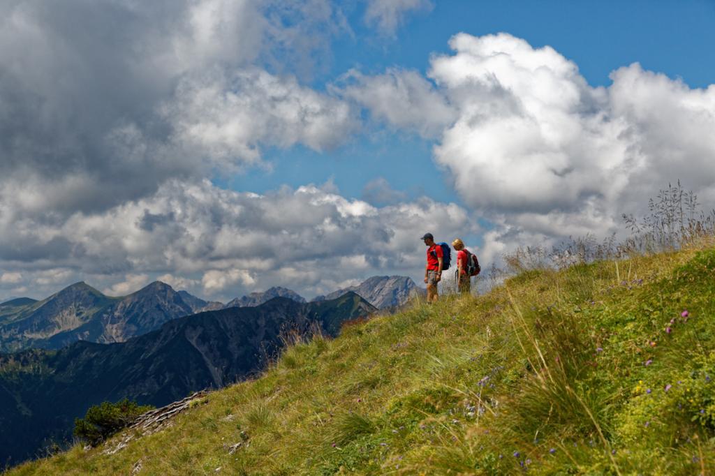 Abstieg in Richtung Hasenjöchl