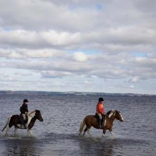 Am Naturstrand in Groß Banzelvitz dürfen sich Pferd und Reiter abkühlen