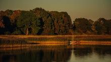 Rund um den Tetzitzer See