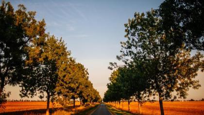 Über ruhige Dorfstraßen führt unsere Route über die Halbinsel Wittow