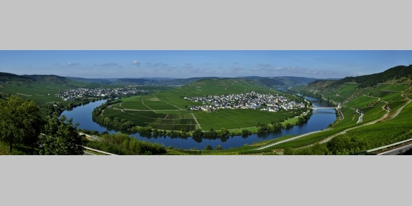 Mosel - Schönste Weinsicht 2016: Moselschleife bei Trittenheim & Leiwen