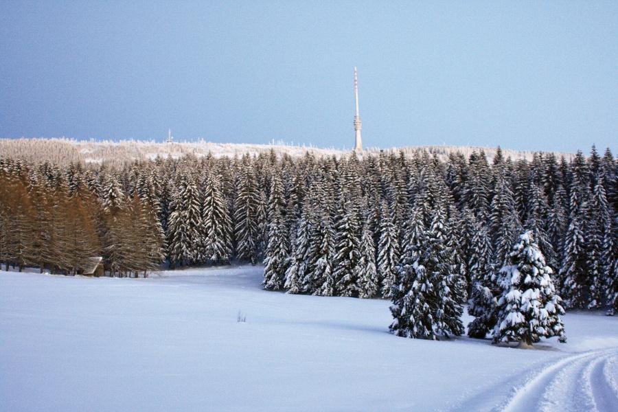 Schneespaziergang zum Wildtiergehege