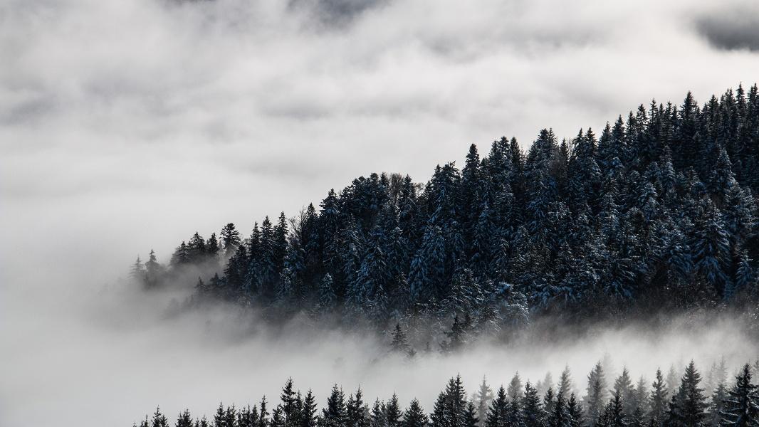 Winterwandern Unterstmatt-Ochsenstall