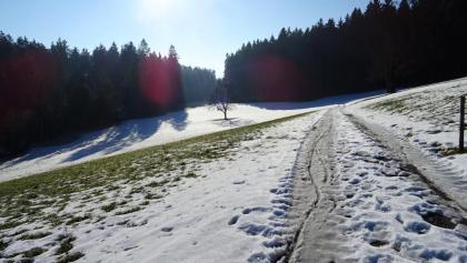"""0700 der Schnee war dank Minustemperaturen hart wie Granit   47°15'30.7""""N 8°17'43.1""""E"""