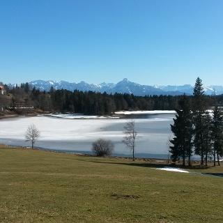 Schwaltenweiher im Winter
