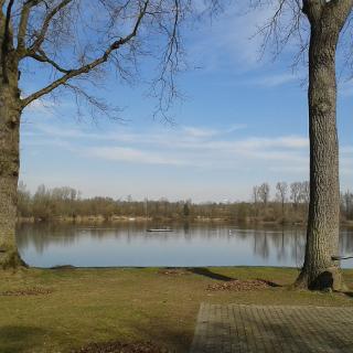 Lingenfelder Badesee