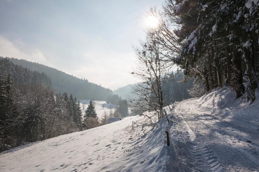 Tour ins Reichenbachtal