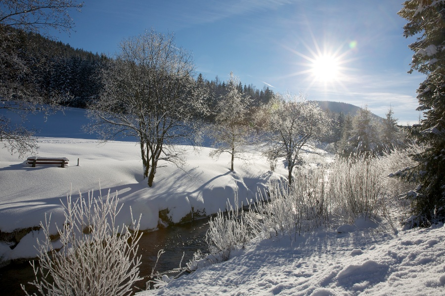 Tour ins Buhlbachtal