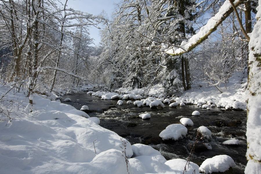 Schönmünzach - Hinterlangenbach