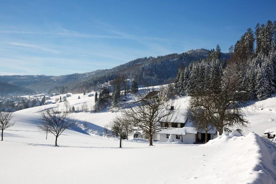 Obertal - Schützenhaus- Ilgenbachtal - Obertal