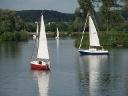 Oberrieder Weiher Segler und See