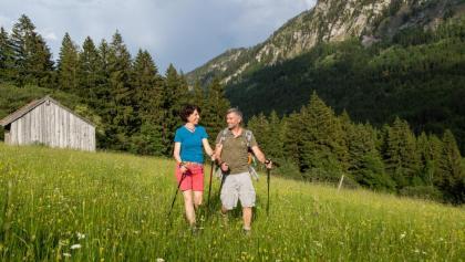 Wandern inmitten von Bergwiesen in Pfronten