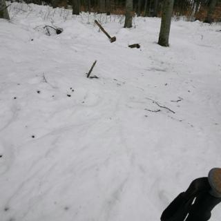Schneedecke am Rande des Rückens (~1200 hm)