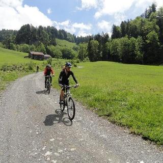 Mit dem Mountainbike nach Schönenbach