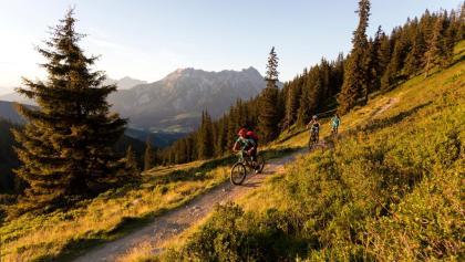 Schönleiten Trail