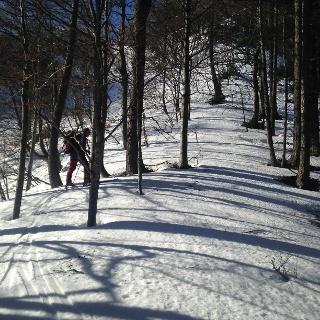 ausreichend Schnee vom Parkplatz weg - auch im Wald