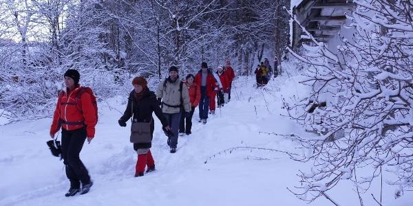 Auf dem Weg durch die verschneite Waldheimat