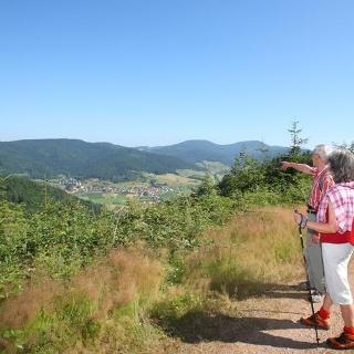 Wandern im Gastlichen Kinzigtal