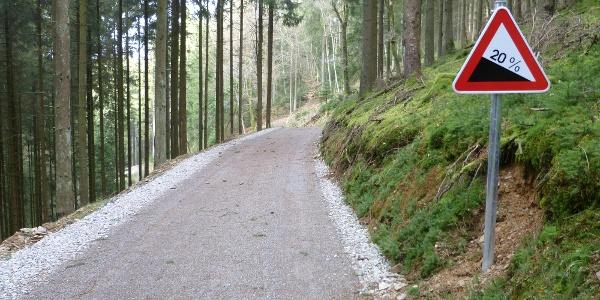 Abfahrt durch den Wald.