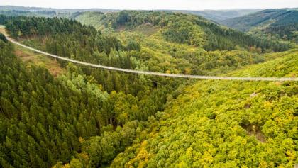 Hängeseilbrücke Geierlay