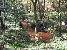 Rotes Wasser (Foto: Armin Feulner, Quelle: Marburg Stadt und Land Tourismus)