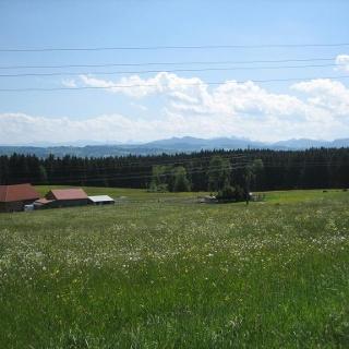 Schöne Wiesen und Panoramablick bei Hellengerst