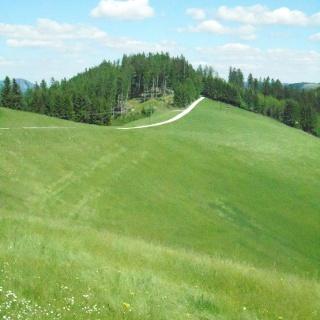 Aussicht Turnersteig