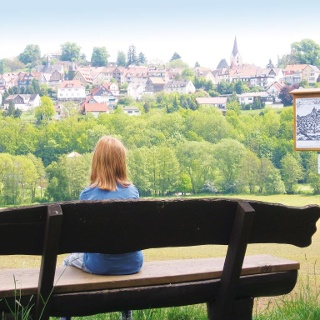 Dilich-Blick