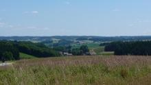 Routenempfehlung Reiten Route 16/17 Von Bergham am Inn über Triftern und Peterskirchen nach Aidenbach - Anschluss an Route 14