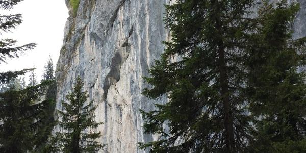 Spitzsteinwand
