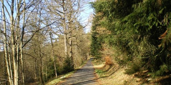 Am Flöhatalradweg