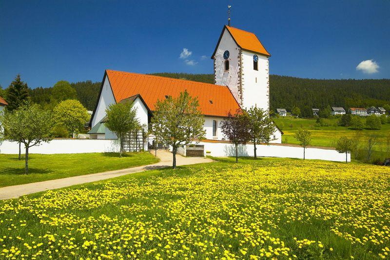Schöne Aussichten in Lenzkirch-Saig