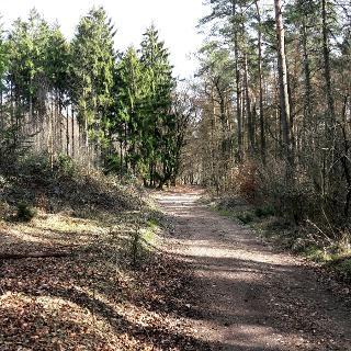 Hermannshöhenweg