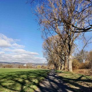 Naturschutzgebiet bei Bingen