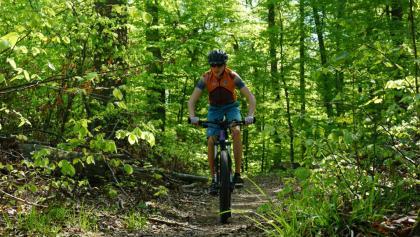 Trail zurück nach Warberg