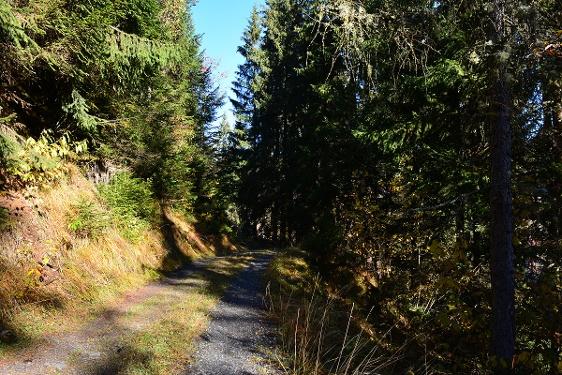 Fideris blauer Spazierweg