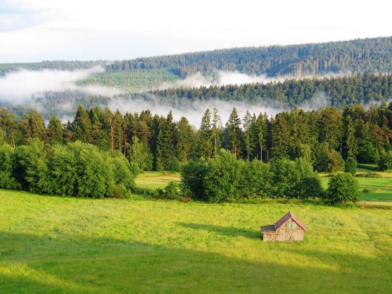 Kleine Mannenbach-Schwabhausen-Runde