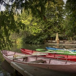 Ruderboote auf dem See bei der Dammenmühle
