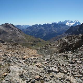 Blick von Fuorcla Suvretta - Piz Nair Berninagruppe
