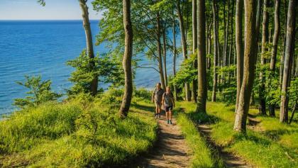 Der Hochuferweg Jasmund ist einer der schönsten Wanderwege Rügens
