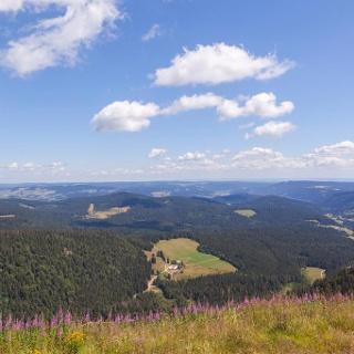 Blick vom Feldberg auf den Raimartihof