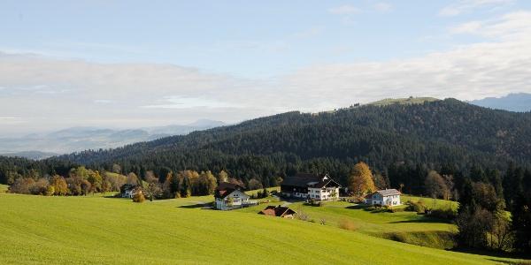 Wiesen und Höfe bzw. kleine Siedlungen prägen weite Teile der Wanderung am Pfänderrücken.