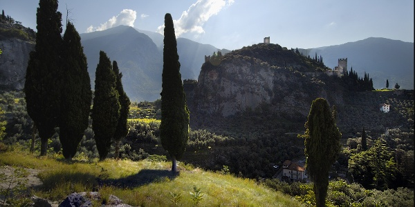 Laghel, through olive groves in Arco