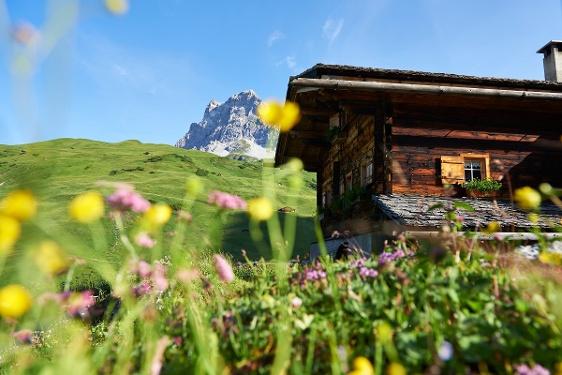 Etappe 3: Carschinahütte–St. Antönien, 72 Prättigauer Höhenweg