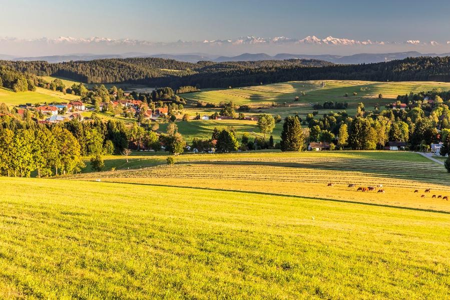 Görwihl: Abwechslungsreiche Rundtour durch den Hotzenwald
