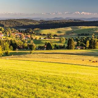 Hotzenwald mit Alpensicht