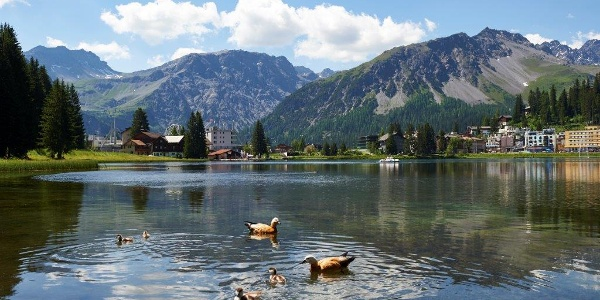 Obersee Sommer